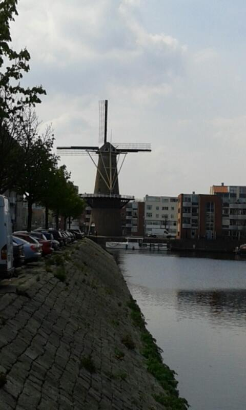 Windmill in the Old town